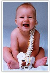 Baby-spine